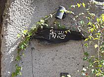 P4014929